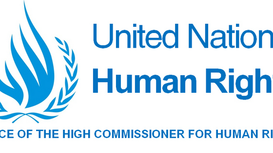OHCHR | Egypt: UN Experts Alarmed by Treatment of Human Rights Defenders After Visit