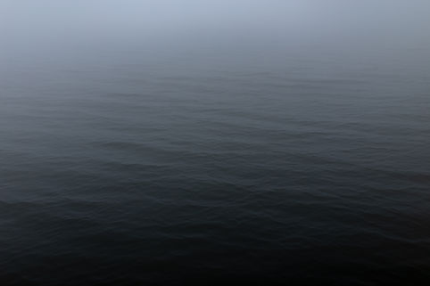 pexels-luis-dalvan-3082340.jpg