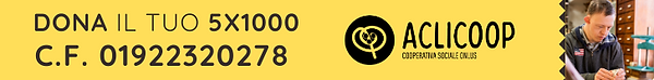 Banner 5x1000.png