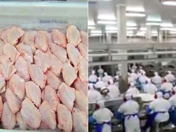 Coronavírus é detectado em asas de frango congeladas importadas do Brasil, dizem autoridades chinesa