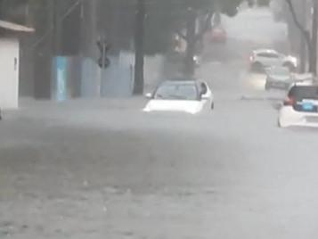 Chuva provoca alagamentos, queda de porta de shopping e de árvores em São José