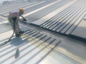 flat-roof-worker.jpeg
