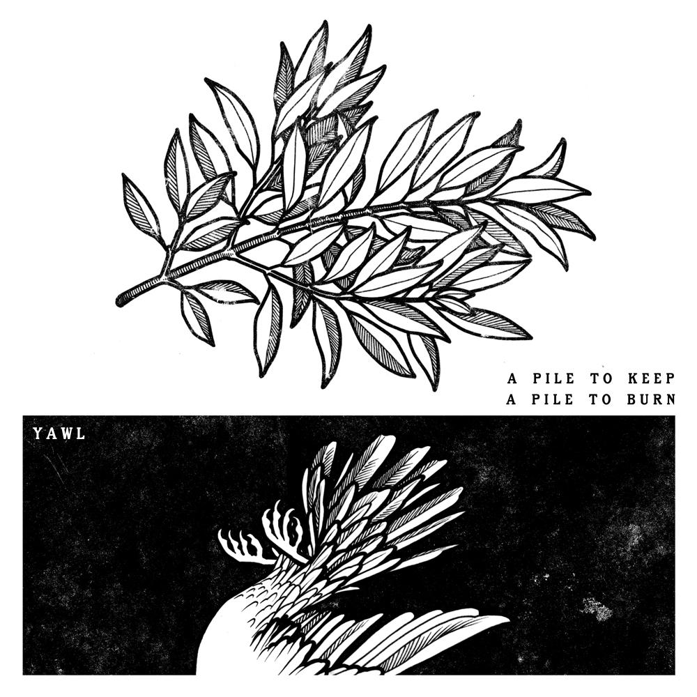 YAWL Album Cover