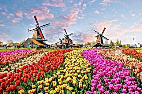AmsterdamCountry.jpg