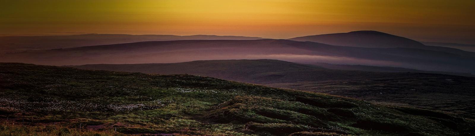 COLOUR - Misty Landscape by Dessy Coyles (9 marks)