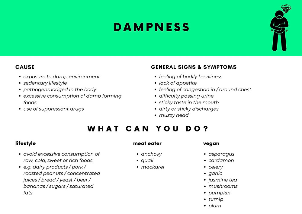 damp and what you can do