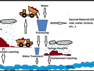 Rigorous and accurate simulation of selenium contamination in water and its environmental impact