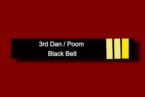 3rd Degree Black Belt Promotion Test & Certification