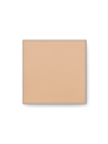 Mary Kay Endless Performance Creme to Powder Foundation