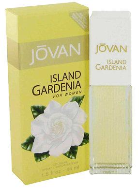 Jovan Island Gardenia