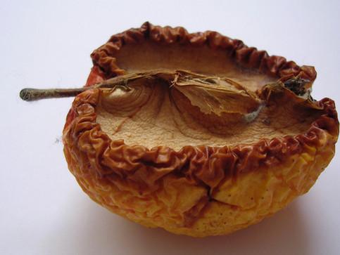 Parabel vom Apfelpflücken