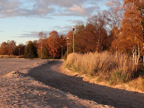 Short & Lonesome Road