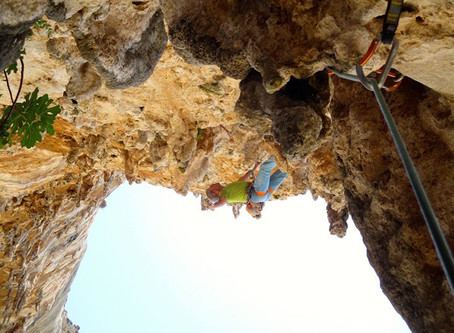 """Free PDF Download: Climbing Notes from """"9 Out of 10 Climbers Make the Same Mistakes"""""""