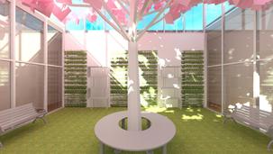 Peace of Mind Wellness Center