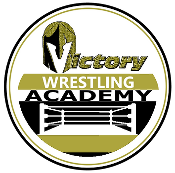 VCW Academy Logo Project New.png
