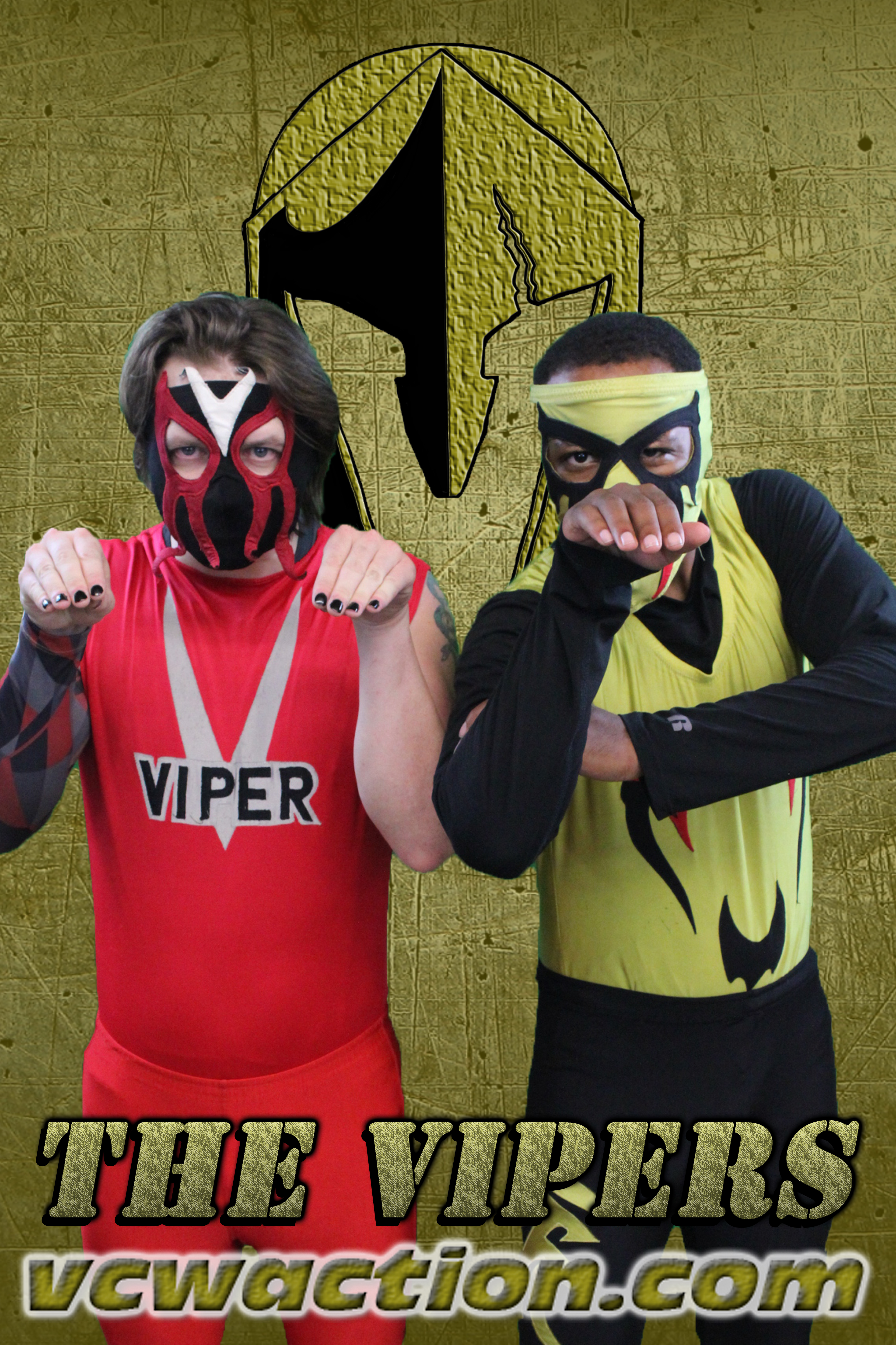 VCW Profile Page Vipers 01