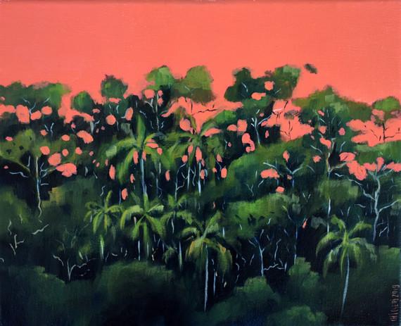 boscosidad (rosa) 27 x 22 cm