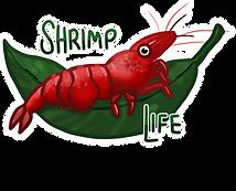 shrimplight.png