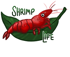 shrimplight.png