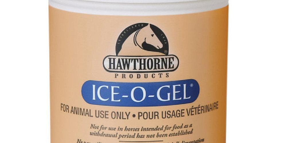 Hawthorne Ice-O-Gel Horse Liniment 16 oz