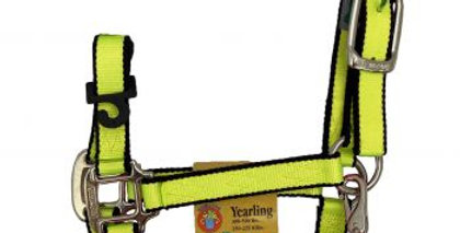 3Ply Yearling Neon Halter