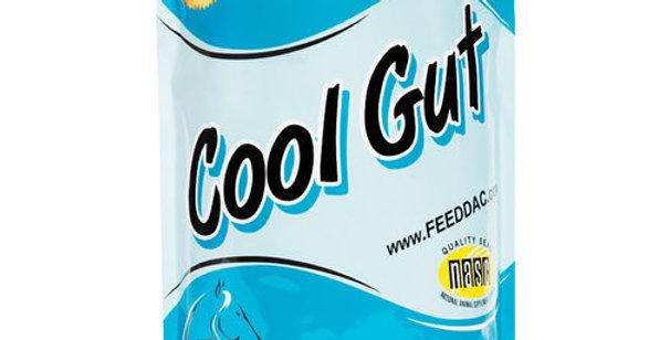 dac Cool Gut Gastric Health Horse Supplement 5 lbs