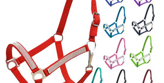Horse Size Nylon Halter With Crystal Noseband And Cheeks   629