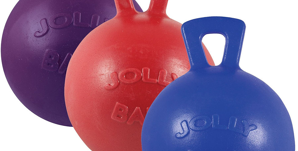 Jolly Ball for Horses & Dogs Choose your color & size!