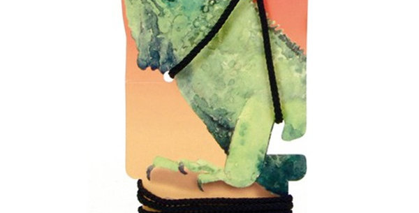 Iguana Leash Combo