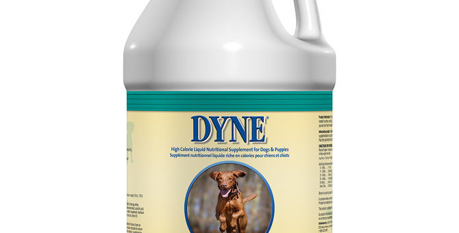 Dyne Nutritional Supplement for Dogs & Puppies