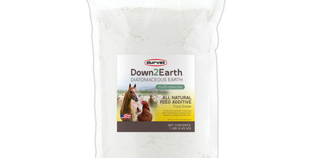 Down2Earth Diatomaceous Earth 1Lb