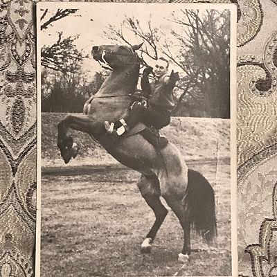 grandpa horse.jpg