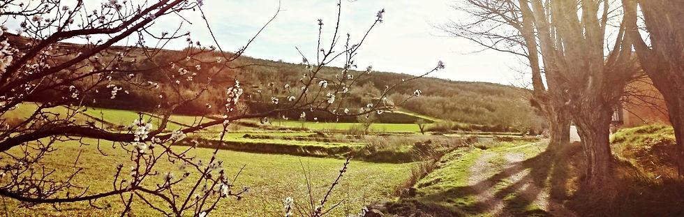 Cuencas Mineras, Teruel, Aragón, Turismo, Campo, Primavera, Rural