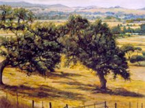 """Sonoma Valley"" Oil on canvas"
