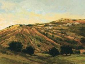 The Ridge' Oil on canvas