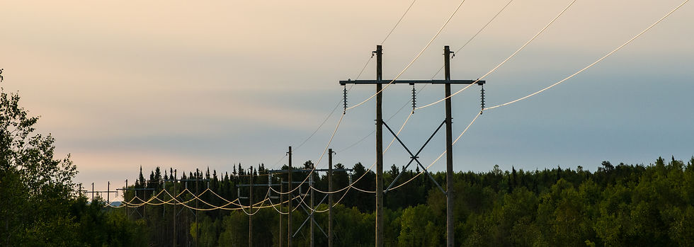 An H-frame powerline through a forested area