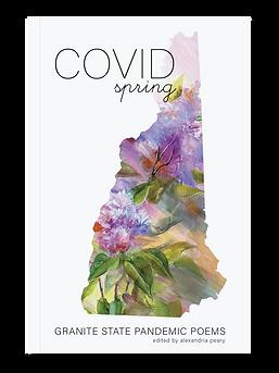 COVIDSpringMock.png