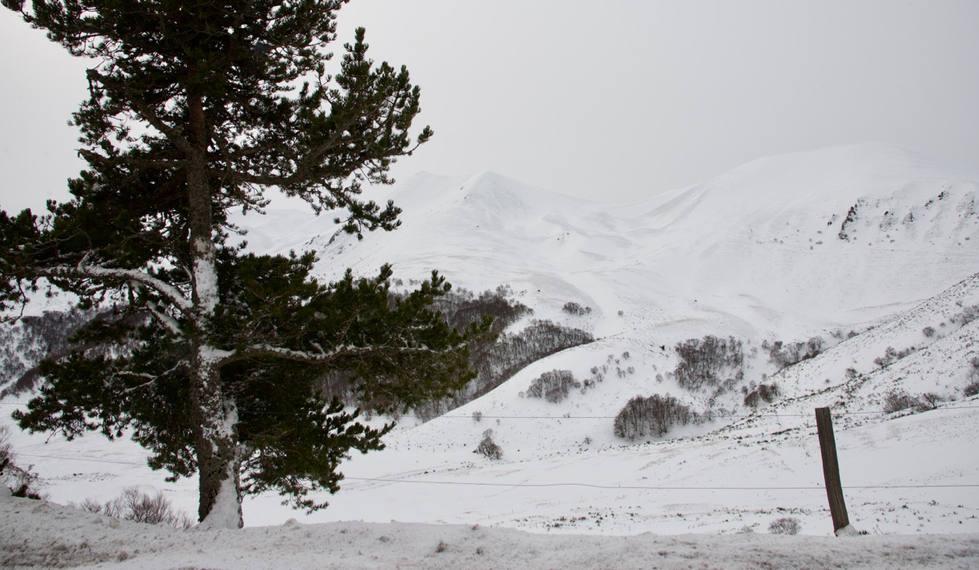 Col de la Croix-Morand hiver.jpg