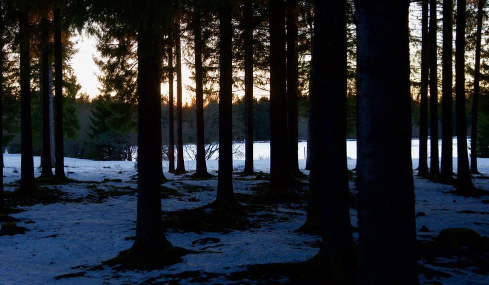 Charlannes sneeuw 2.jpg