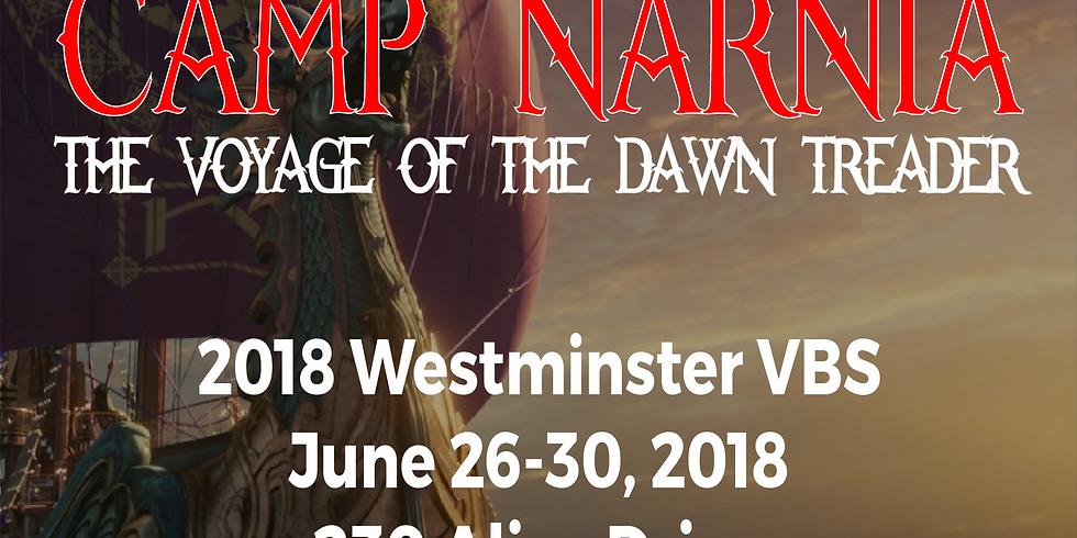 2018 VBS - Camp Narnia