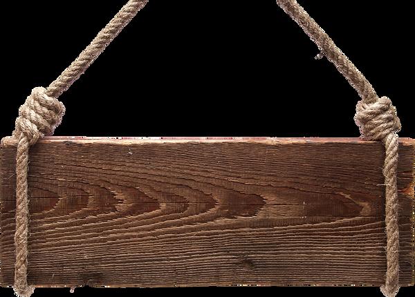 transparent-brown-swing-bag-handbag-shou