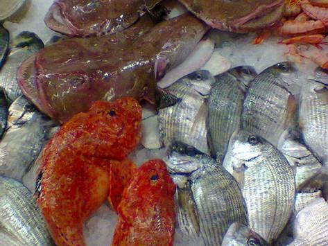 La Buona Pescheria!Quando il pesce fresco ti arriva a casa.