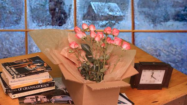 Bad Rhyme dead roses Fstill high.jpg