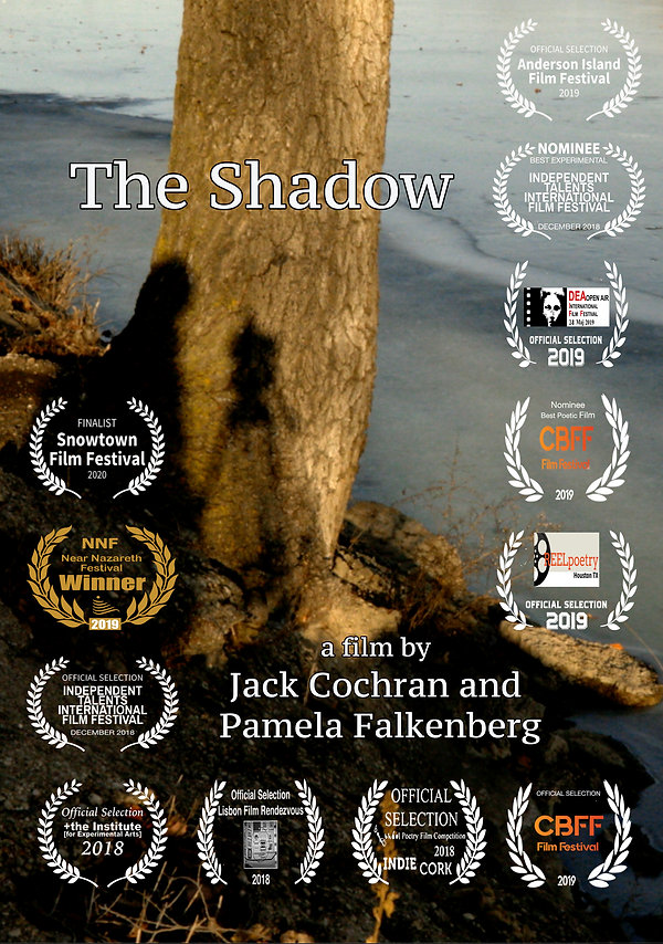 The Shadow Poster w 12 laurels.jpg
