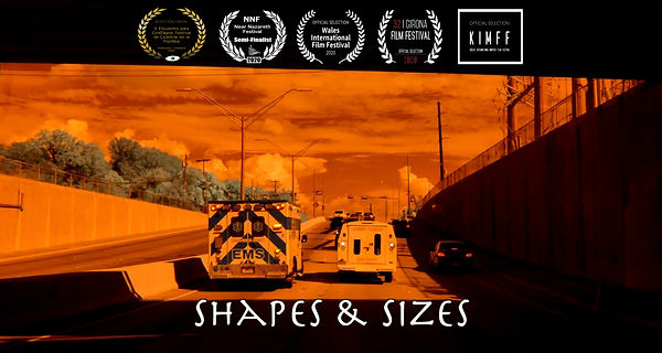 Shapes & Sizes Poster w 5 laurels.jpg