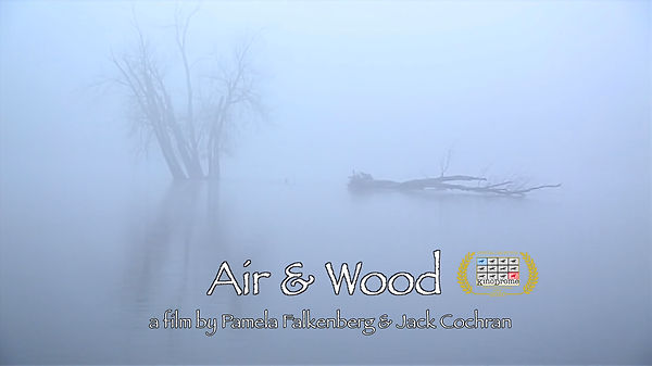 Air & Wood poster w 1 laurel.jpg