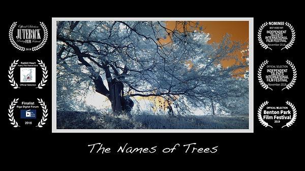 The Names of Trees w 6_ laurels.jpg