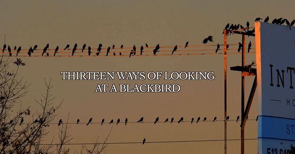 Blackbird title.jpg