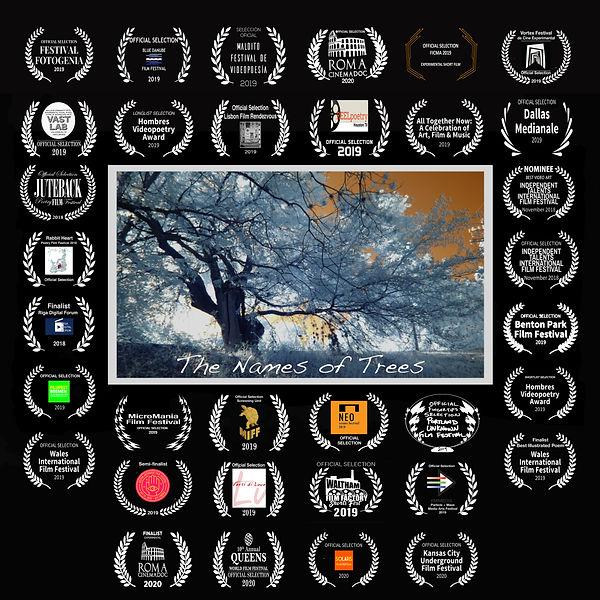 The Names of Trees w 34 laurels.jpg