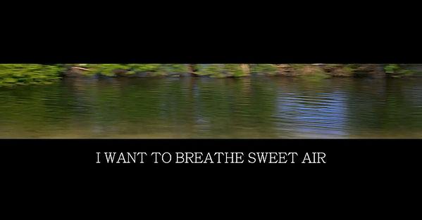 I Want to Breathe Sweet Air.jpg